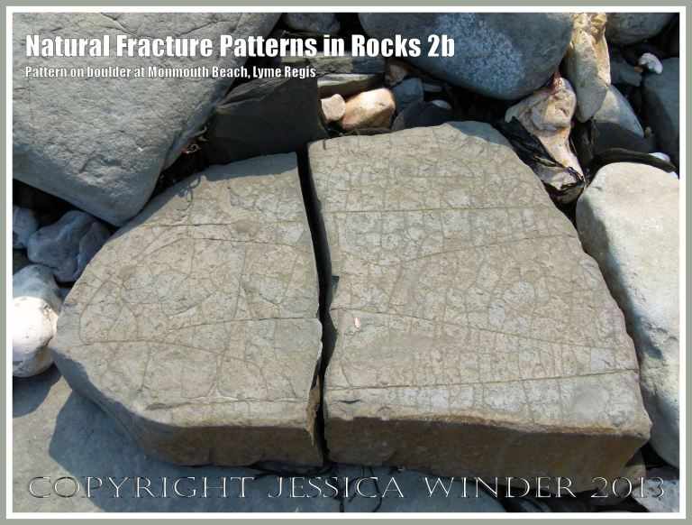 Natural Fracture Patterns in Rocks 2b - Boulder with a natural pattern of cracks on the shore at Monmouth Beach, Lyme Regis, Dorset, UK on the Jurassic Coast.