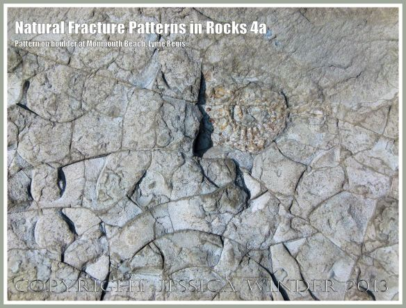 Natural Fracture Patterns in Rocks 4a - Close up photograph of natural patterns of cracks in a boulder on the shore at Monmouth Beach, Lyme Regis, Dorset, UK on the Jurassic Coast.