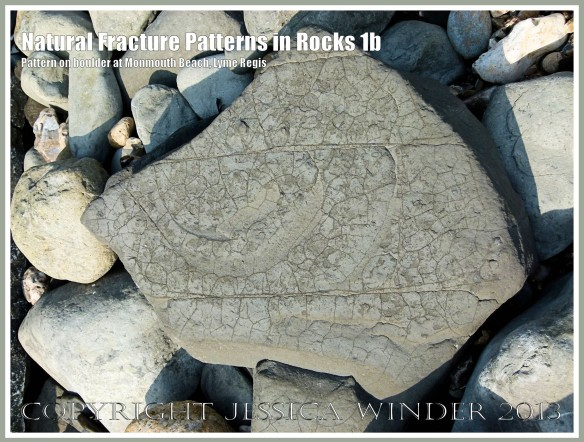 Natural Fracture Patterns in Rocks 1b - Boulder with a natural pattern of cracks on the shore at Monmouth Beach, Lyme Regis, Dorset, UK on the Jurassic Coast.
