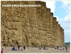 East Cliff at West Bay near Bridport (2) - The 49 metre high East Cliff with alternating horizontal bands of hard and soft strata in the Bridport Sand Formation resulting in differentially eroded parallel layers with the harder carbonate-cemented strata jutting out as ledges.