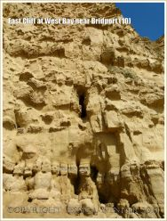 East Cliff at West Bay near Bridport (10) - Sometimes the vertical cambering joints in the cliff face are widened by erosion to form caves.