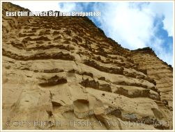 East Cliff at West Bay near Bridport (3) - The cliff is made of sandstone of the Bridport Sand Formation which is an Upper Lias rock of the Jurassic period. Wind-blown sand has weathered the rock to leave bands of harder calcareous sandstone protruding like jagged ledges. The softer sandstone layers become progressively thinner towards the top of the cliff.