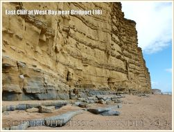 East Cliff at West Bay near Bridport (18) - View looking east towards Burton Bradstock, showing the natural, unoxidised, blue-grey colour of the fine-grained quartz arenite sandstone of the Bridport Sand Formation at the base of the East Cliff.