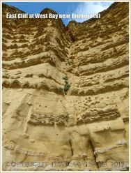 East Cliff at West Bay near Bridport (8) - A vertical cambering joint in the cliff face with vegetation colonising the sand and debris filled crack.