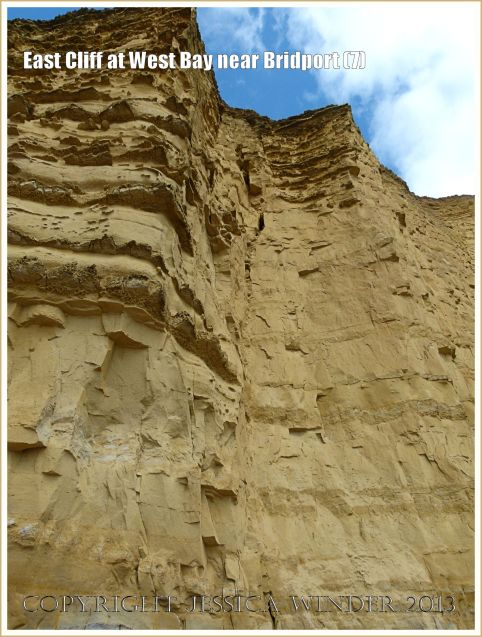 East Cliff at West Bay near Bridport (7) - A number of vertical cambering joints have opened up in the cliff. These are particularly susceptible to weathering and result in a series of butresses and recesses along the whole length of the cliff. A small verticak crack filled with sandy debris is shown here in the recessed angle between two buttresses.