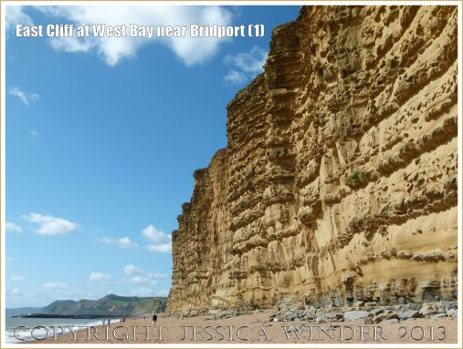 East Cliff at West Bay near Bridport (1) - Towering golden yellow cliffs of the Bridport Sand Formation on the Jurassic Coast in Dorset, UK.