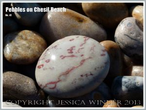 Pale grey pebble with red veins
