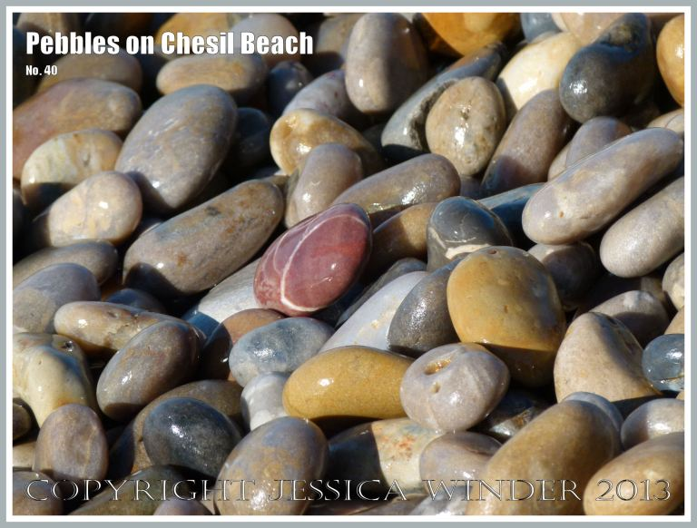 Coloured and patterned pebbles on the beach