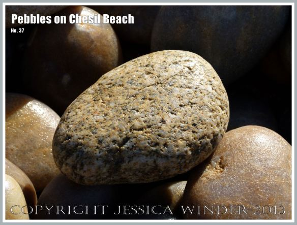 Micro-crystalline granite pebble on the beach