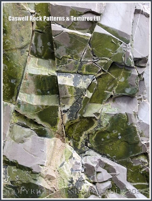 Caswell Rock Patterns & Textures (1) - Natural patterns in Carboniferous cliff strata, partially coated with a green bio-film, at Caswell Bay, Gower, South Wales.
