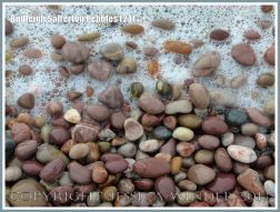 Coloured pebbles washed by the sea
