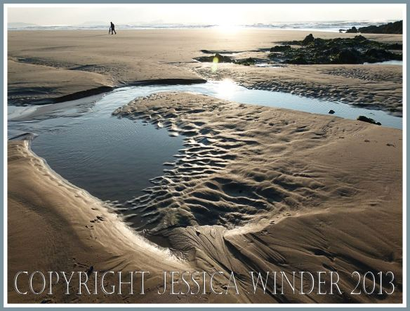 sand patterns and tide pools in late winter sunshine