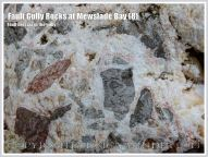 Fault Breccia with calcite matrix