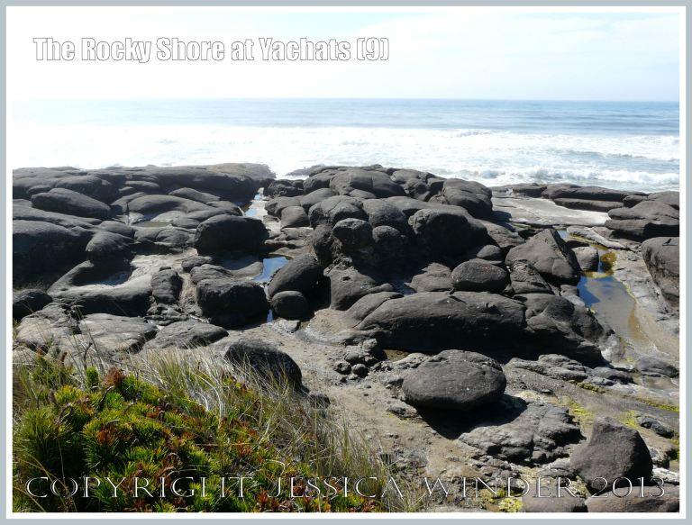 Rock platform eroding to boulders, pools and gullies at Yachats.