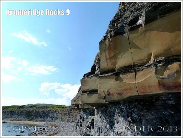 Cliff strata at Kimmeridge Bay