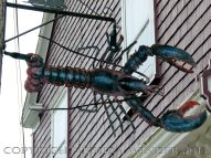 Sea food art (lobster) in the streets of Lunenburg, Nova Scotia.