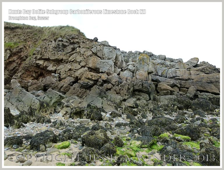 Rock texture in the cliffs on the west side of Broughton Bay, Gower, South Wales.