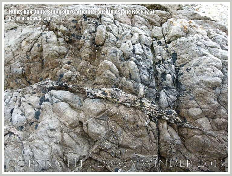 Rock textures and fracture patterns in Gower Carboniferous Limestone