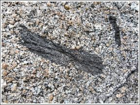 Close-up of granite texture and structure with inclusion