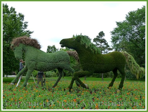 Horses - part of a mosaiculture tableau depicting the shepherd who changed a desolate and arid land into fertile fields and forest by planting trees.