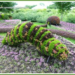 Larger than life caterpillar sculpted from living plants at the Jardins Botanique Montreal