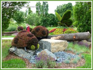 Larger than life ladybirds sculpted from living plants at the Jardins Botanique Montreal
