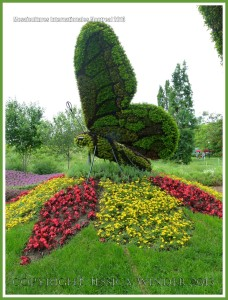 Giant butterfly sculpted from living plants at the Jardins Botanique Montreal
