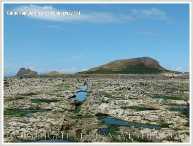 Gullies on Worms Head Causeway 11