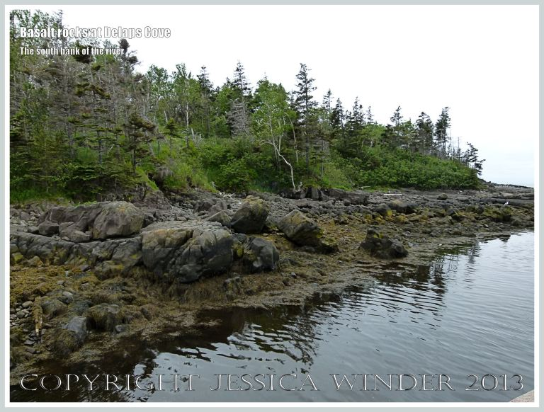 Natural basalt outcrops on the south bank of the river at Delaps Cove