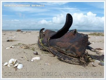 Washed Up at Whiteford: Old Shoe 1.3