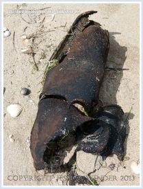 Washed Up at Whiteford: Old Shoe 1.2