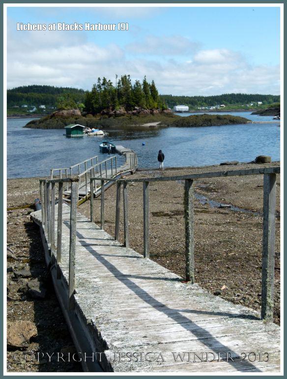 Old wooden walkway pontoon across the beach at Blacks Harbour, New Brunswick, Canada.