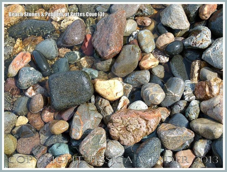 Pebbles and beach stones on Grand Manan Island