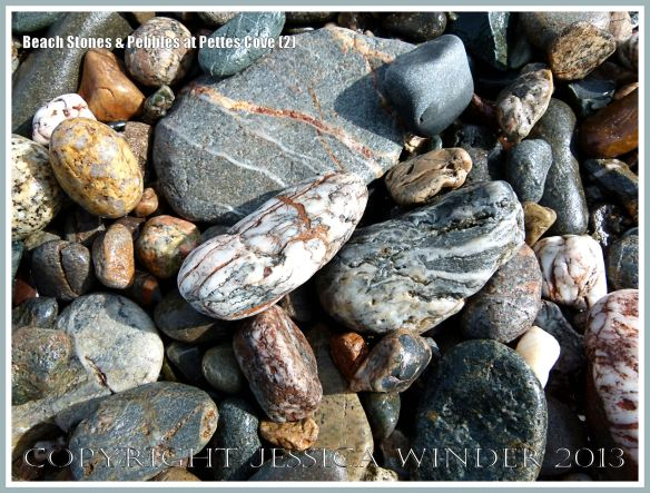 Pebbles and beach stones on Grand Manan Island