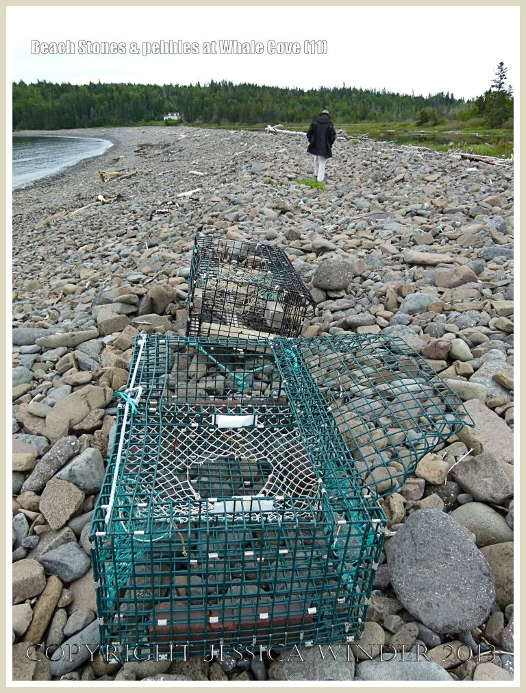 Beach stones and lobster pots at Whale Cove.