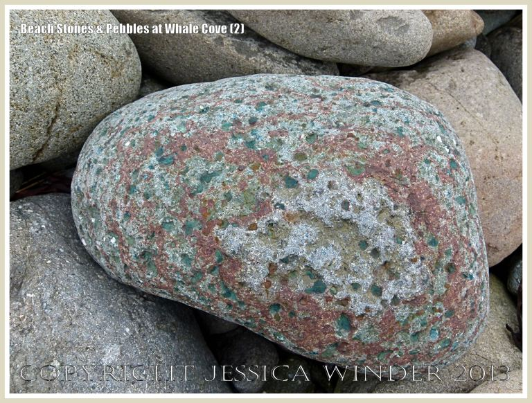 Beach stone shape, texture, and colour at Whale Cove