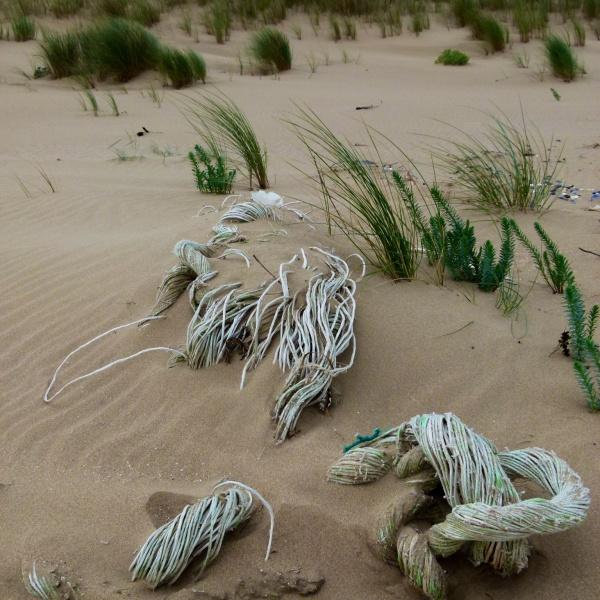 Rope & Net Flotsam 5