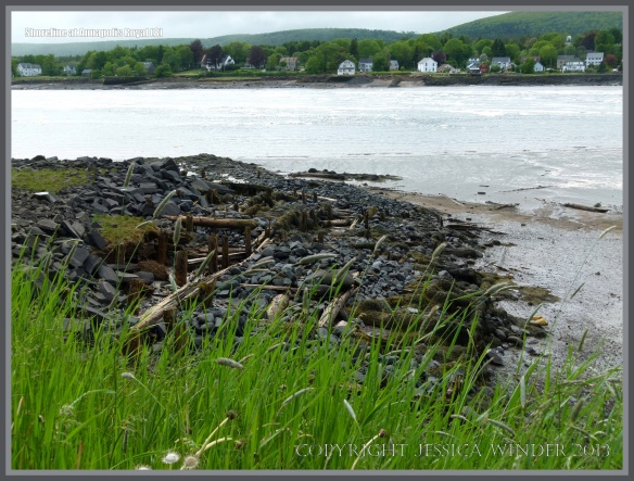 Rocks and timber on the shore at Annapolis Royal