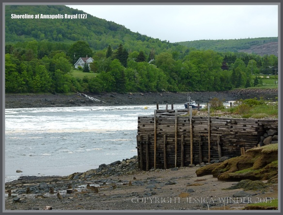Timber revetments on the shore at Annapolis Royal