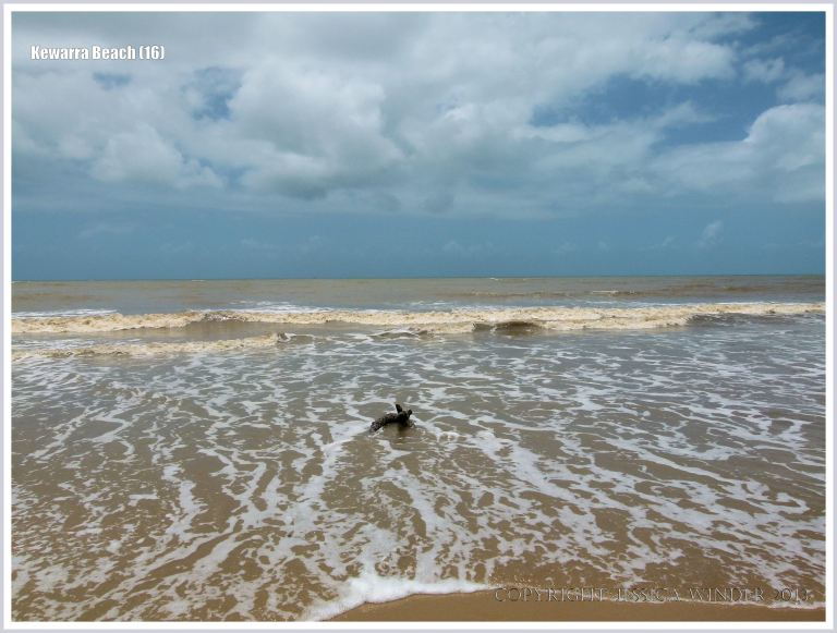 Sky, sea, surf, and sand