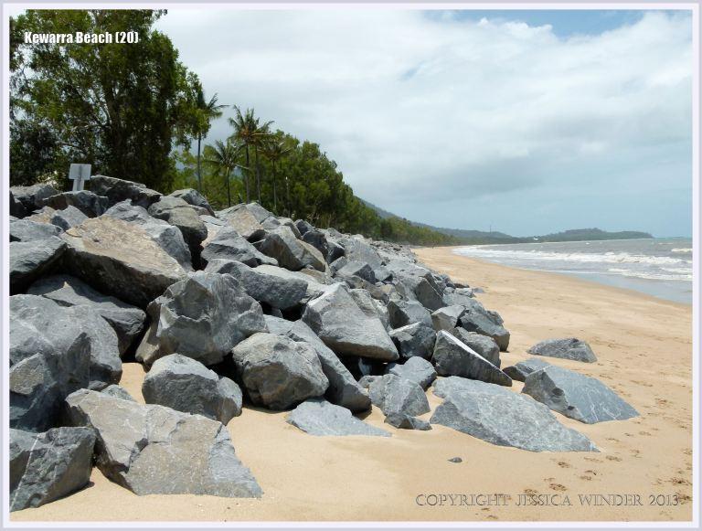 Rip-rap rocks on a tropical beach