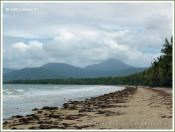 View of Three Mile Beach at Port Douglas, Queensland, Australia, fringed with palms and Beach Casuarina trees