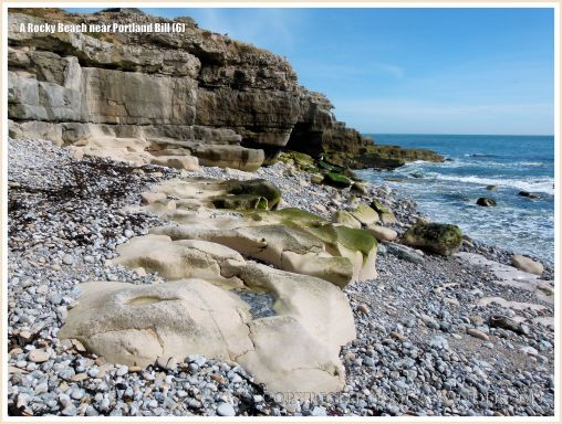 Wave-worn limestone outcrops among pebbles on the beach