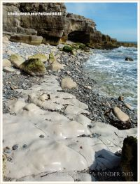 Smooth limestone outcropping amongst pebbles low on the seashore.
