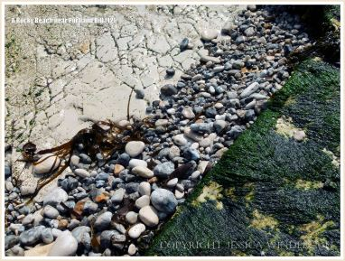 Seaweed, pebbles, and limestone on the seashore