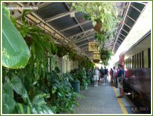 View of the railway station at Kuranda
