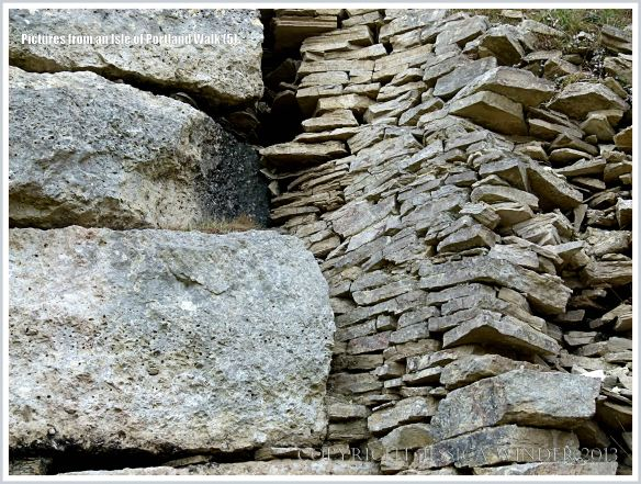 Detail of a stone wall beside the coastal path on the Isle of Portland