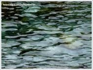 Natural pattern of ripples and reflections in shallow water aff the Isle of Portland, Dorset, U.K.