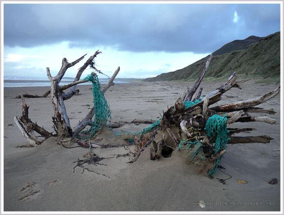 Green fishing net of driftwood