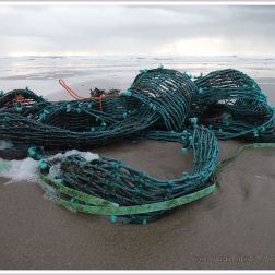 Green fishing net washed up as flotsam on a sandy beach